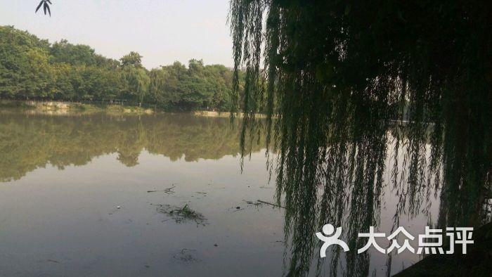 泥巴沱风景区-图片-新都区周边游-大众点评网