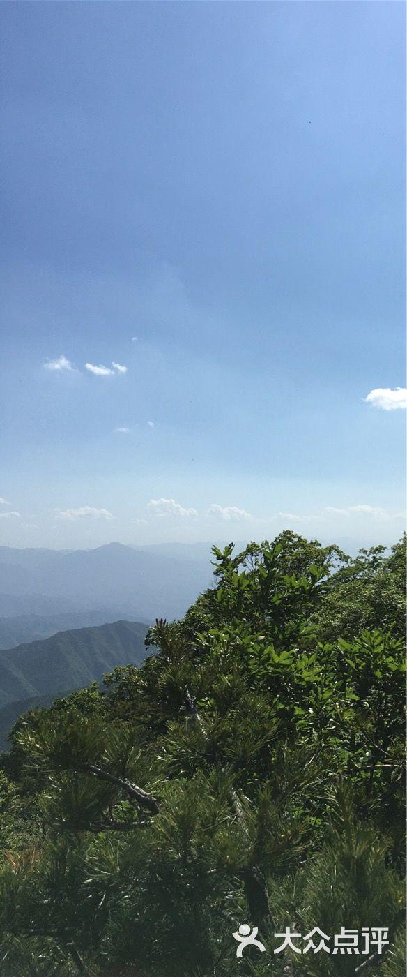 王顺山国家森林公园图片 - 第360张