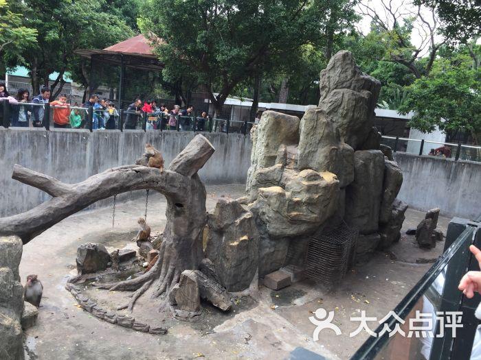 汕头动物园图片 - 第1张