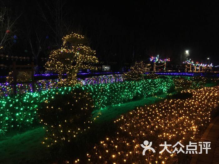 鄢陵鹤鸣湖夜景