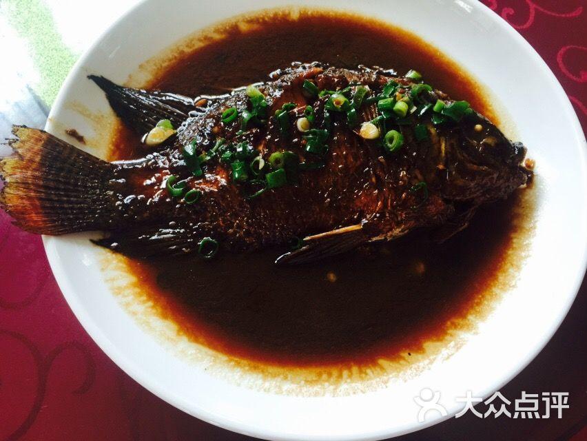 珍珠泉风景区-珍珠鱼图片-南京景点-大众点评网