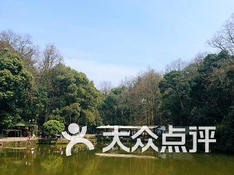 九溪垂钓园
