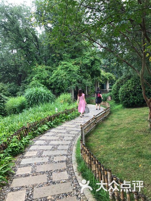 青岛植物园图片 - 第2张