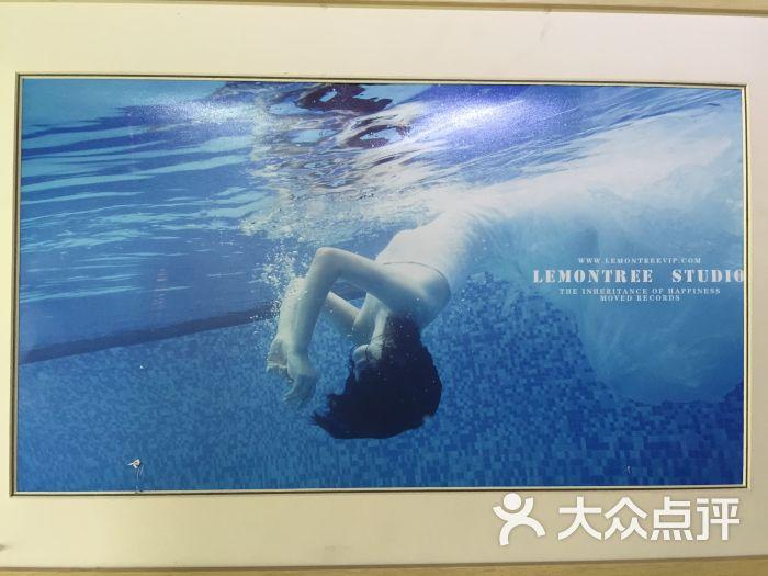 lemon tree陶笛曲谱-柠檬树lemontree 华南地区顶级摄影机构