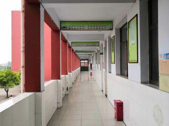 东方国际学校