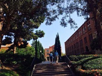 加利福尼亚大学洛杉矶分校