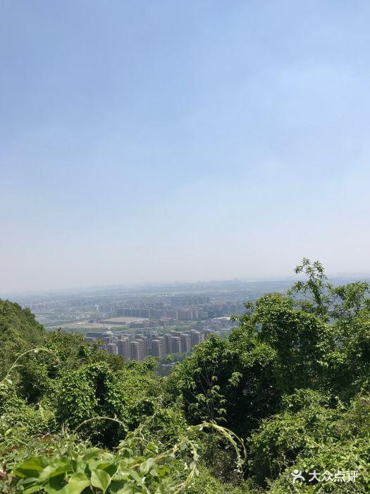 杭州半山国家森林公园图片 - 第764张