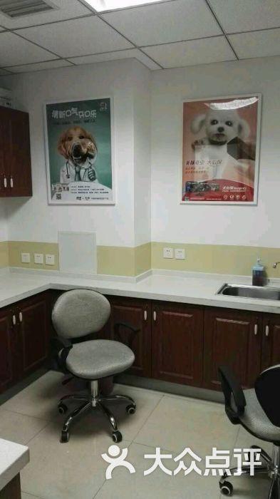 美联众合动物医院(常赢分院)图片 - 第133张