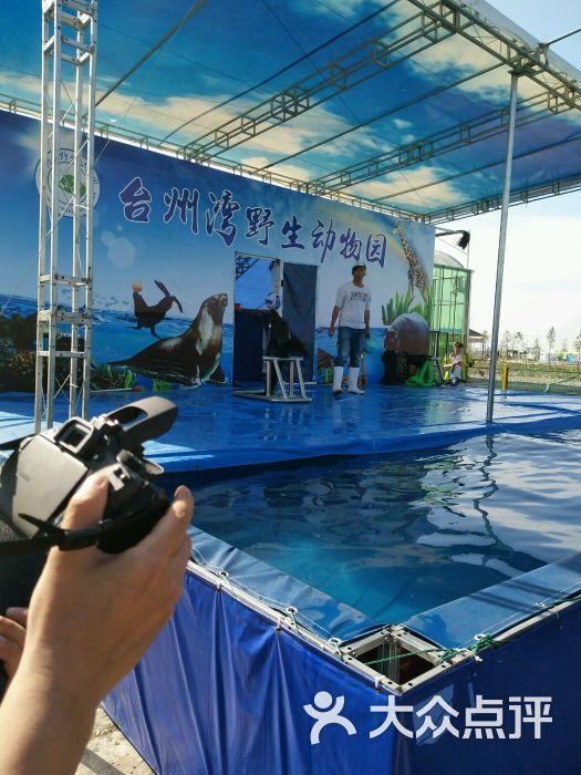台州湾野生动物园图片 - 第7张