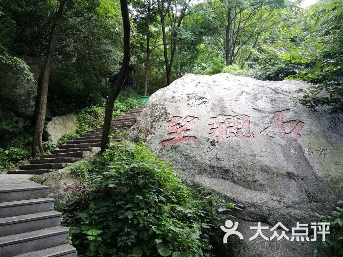 王顺山国家森林公园图片 - 第1张