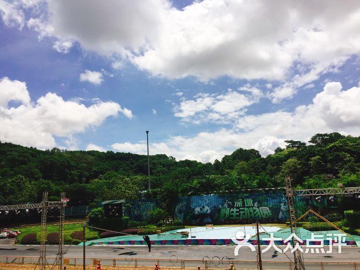 深圳野生动物园图片 - 第12张