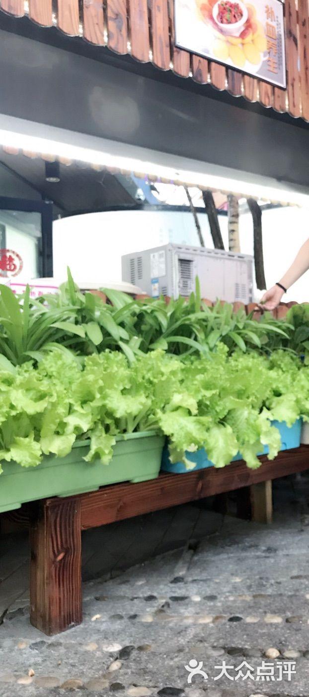 大鹅岛绿色生态园·中餐厅的点评
