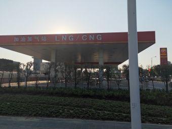 中油华东石油(双鹰站)