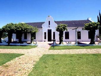 Cape Town Ostrich Ranch
