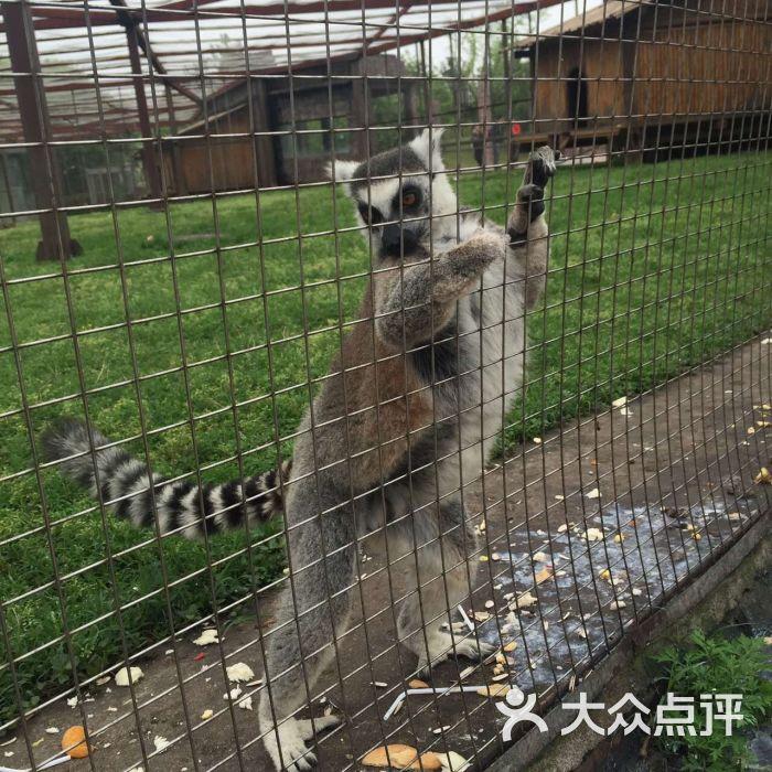 南昌新动物园图片 - 第329张