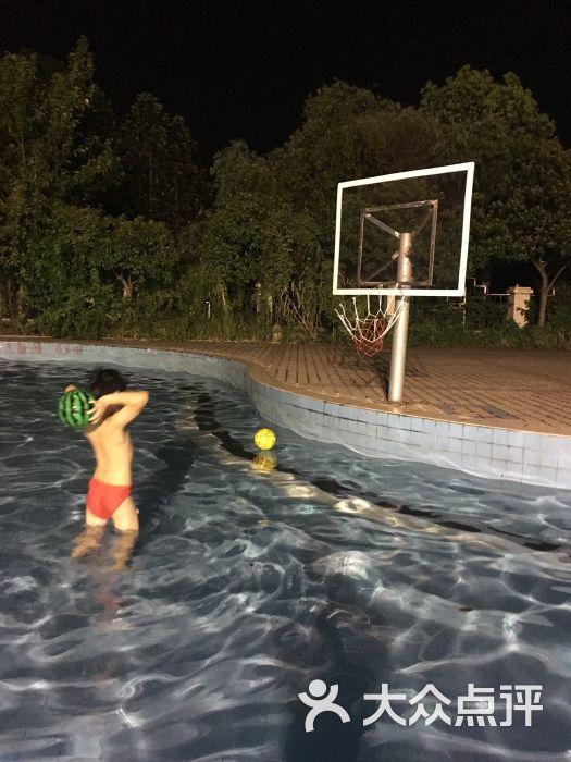 花园金银游泳池(诺森德体育门球湖店)-视频-武最新的图片v花园碧海图片