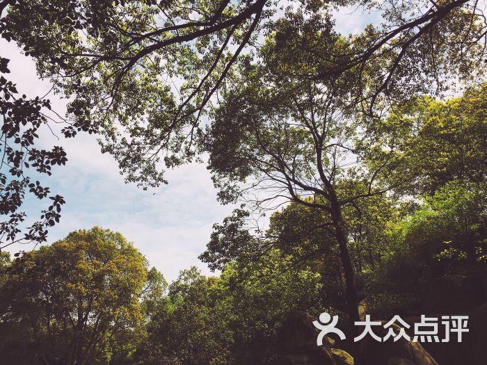 天池山风景区-图片-苏州景点-大众点评网