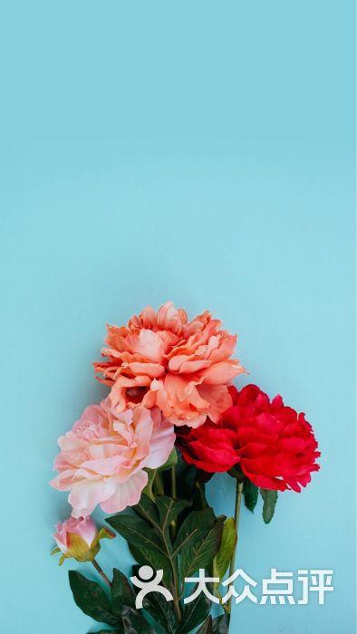 泰芒了-美食-怀化美食-大众点评网深夜樱桃小丸子图片图片