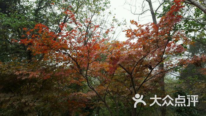 栖霞山名胜风景区图片 - 第5300张