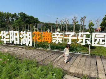 华阳湖克拉农场