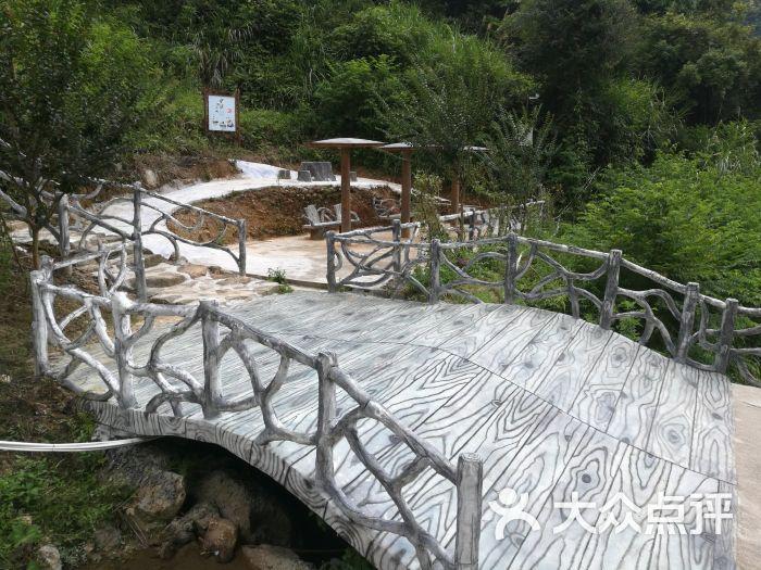 石龙谷森林游乐园图片 - 第1张