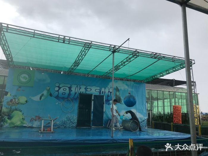 台州湾野生动物园图片 - 第4张