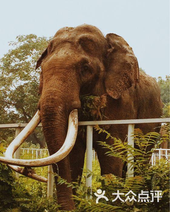天津动物园图片 - 第2835张