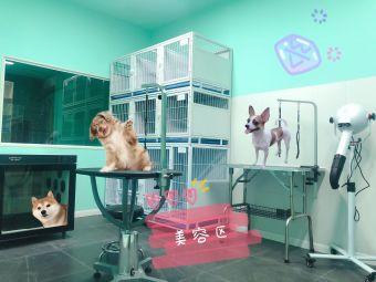 九二宠物生活馆