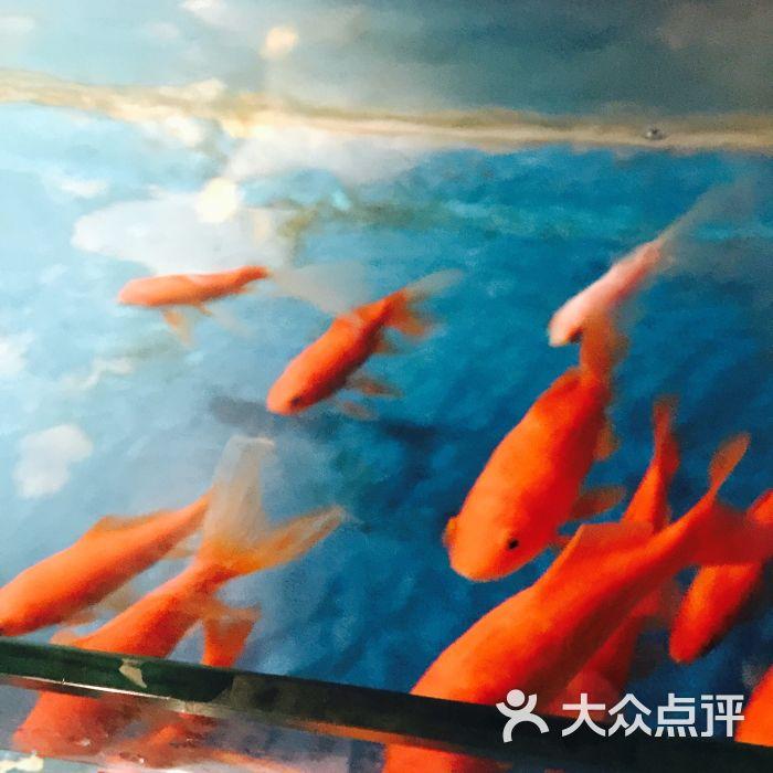 海底捞火锅(牡丹园店)的全部点评-北京-大众点评网