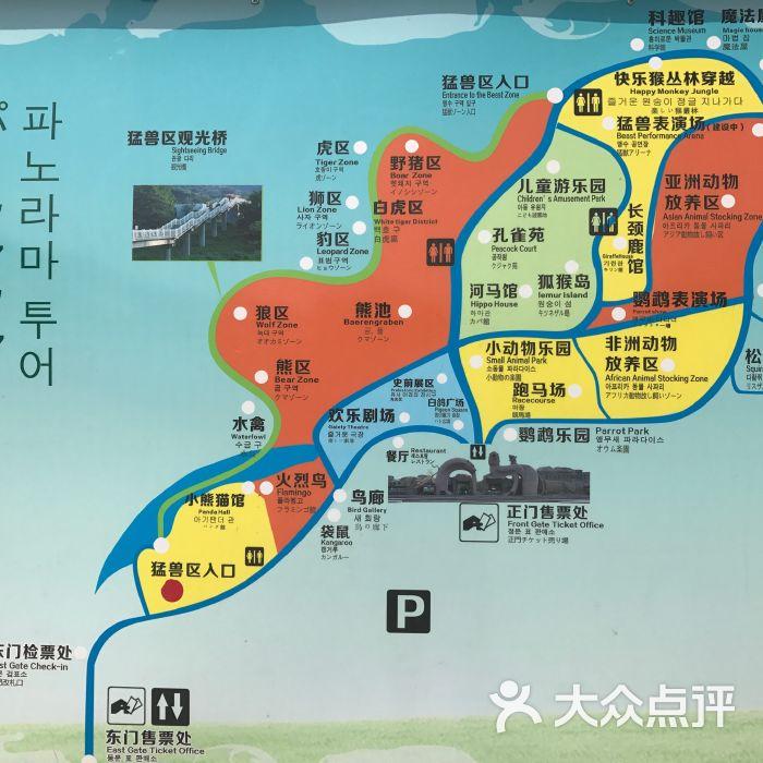 青岛森林野生动物世界图片-北京动物园-大众点评网