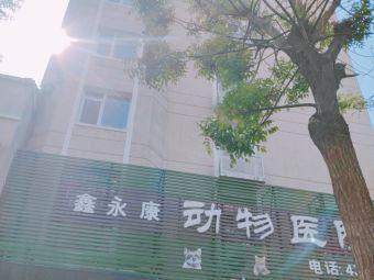锦州鑫永康动物医院