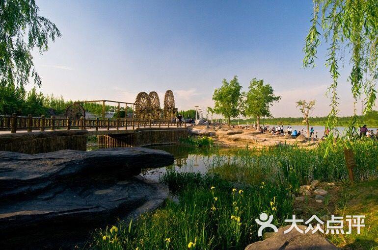减河湿地风景区-图片-德州周边游-大众点评网