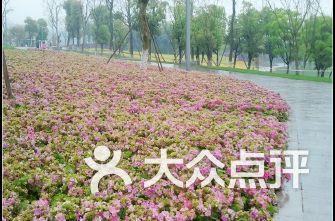 渝北中央公园