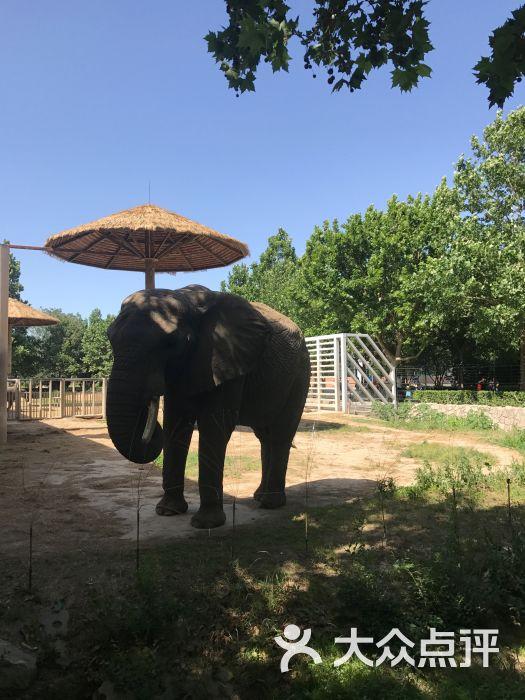 北京动物园图片 - 第1张