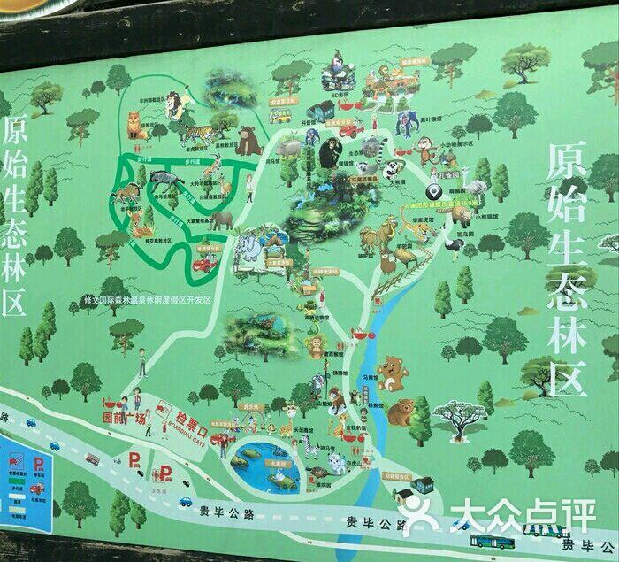 贵阳森林野生动物园图片 - 第48张