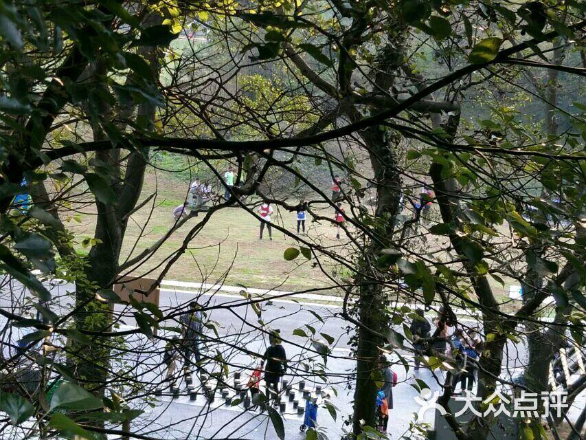 老山森林公园老山人家烧烤的团购评价-南京-大众点评网