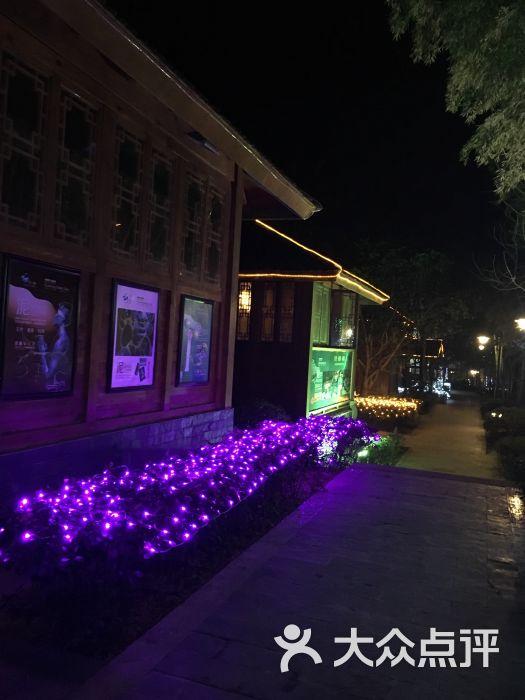 洪湖悦兮半岛国际温泉度假村-图片-洪湖市酒店-大众