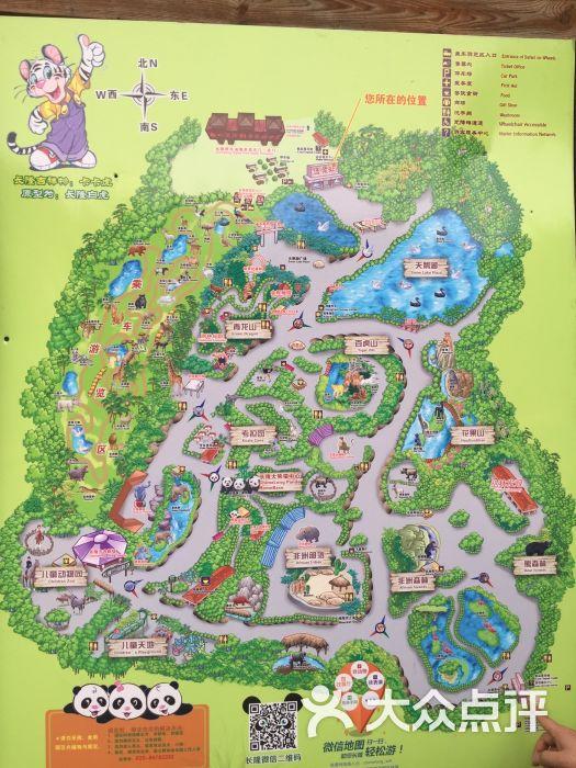 香江长隆野生动物世界-图片-广州景点-大众点评网