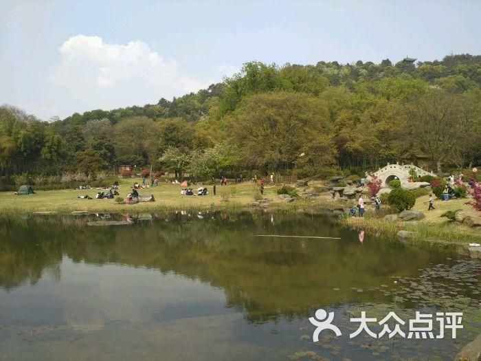 东湖磨山风景区图片