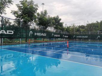 南外国王网球训练营