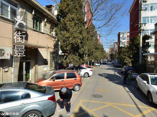 蓓蕾幼儿园-图片-北京-大众点评网
