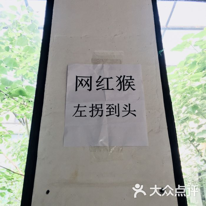 天津动物园景点图片 - 第264张