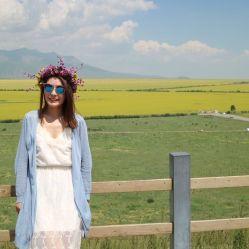 稻草人旅行的图片