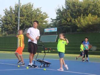 泰尼●快易网球培训