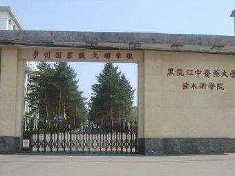 黑龙江中医药大学佳木斯学院