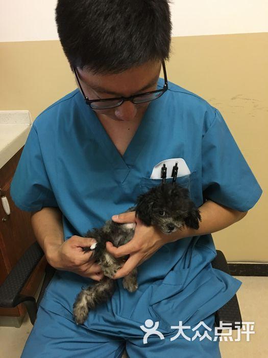 美联众合常赢动物医院图片 - 第15张