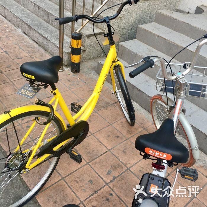ofo共享单车图片 - 第3张