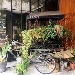 W+S CAFE by NAPOLEON的图片