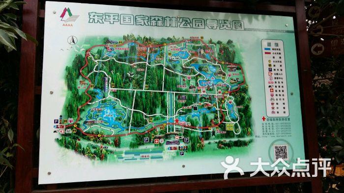 东平国家森林公园图片 - 第8张