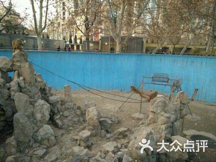 渭滨公园动物园图片 - 第39张